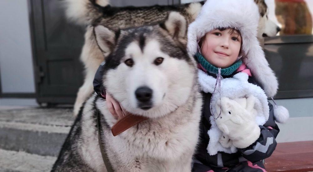 Крещенские забавы в Сибирском зоопарке в Солнечном!