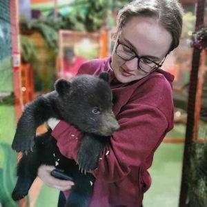 Центр для реабилитации медвежат-сирот планируют создать в Иркутской области